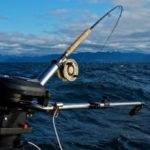 Best Braided Fishing Lines for Saltwater in 2021