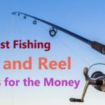10 Best Fishing Rod And Reel Combo For The Money In 2021