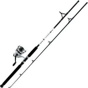 Daiwa D Wave Saltwater Spinning Combo