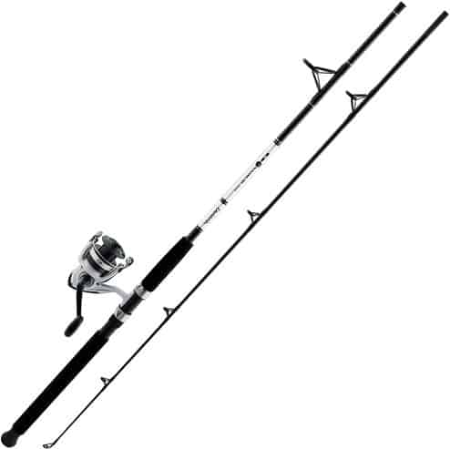 Daiwa D-Wave Saltwater Spinning Combo